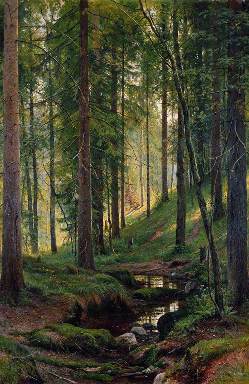 Ручей в лесу на косогоре