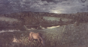 picture Horses on pasture night