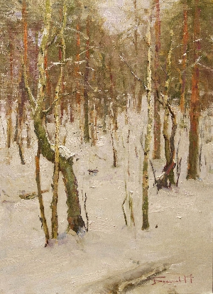 picture In the winter forest